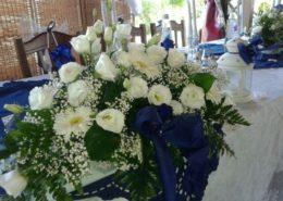 fiori rinfresco strozza